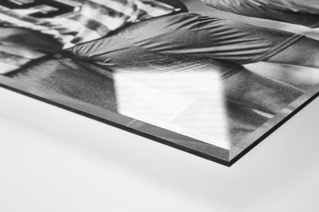 Rücken der Löwen als Direktdruck auf Alu-Dibond hinter Acrylglas (Detail)