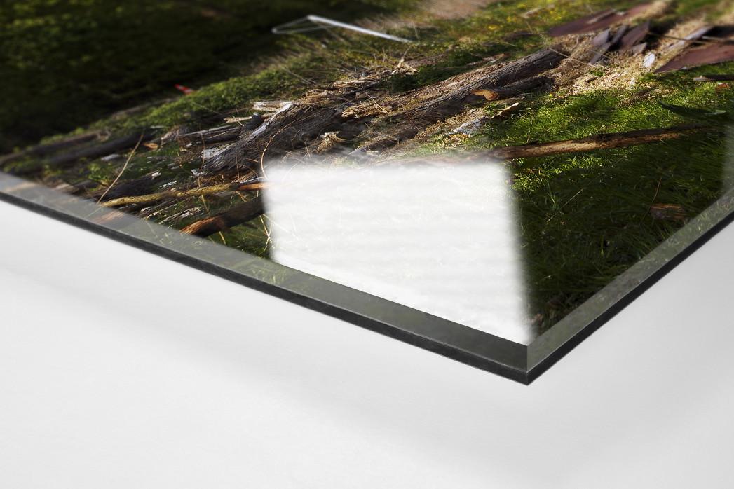 Verlassene Stadien - Hamburg (1) als Direktdruck auf Alu-Dibond hinter Acrylglas (Detail)