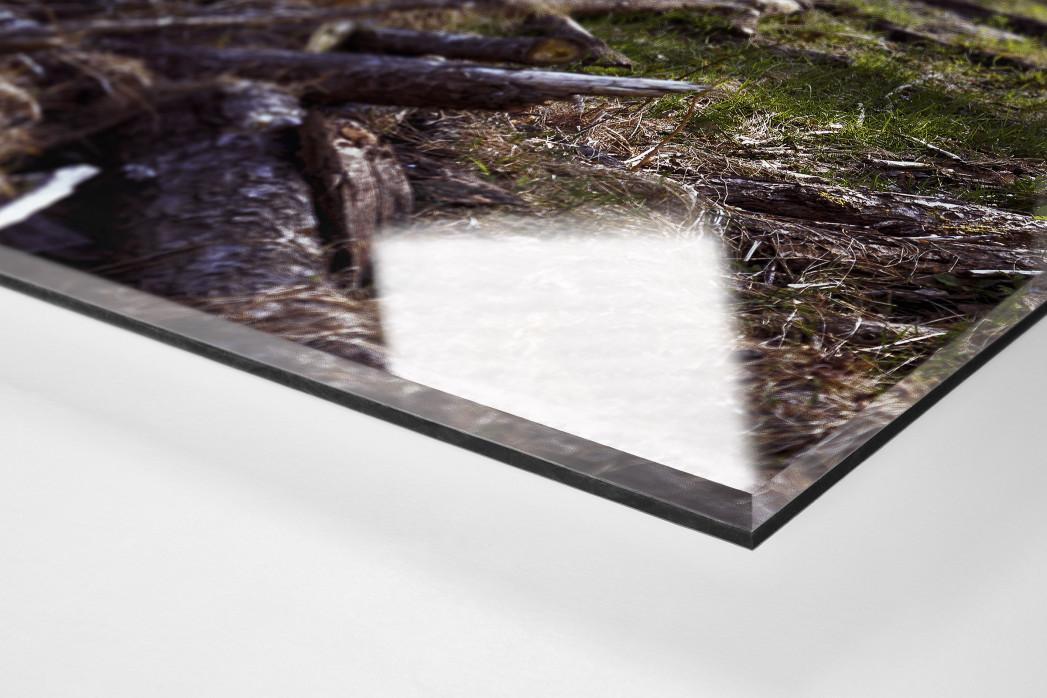 Verlassene Stadien - Hamburg (2) als Direktdruck auf Alu-Dibond hinter Acrylglas (Detail)