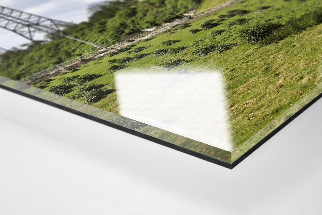 Verlassene Stadien - Essen (1) als Direktdruck auf Alu-Dibond hinter Acrylglas (Detail)