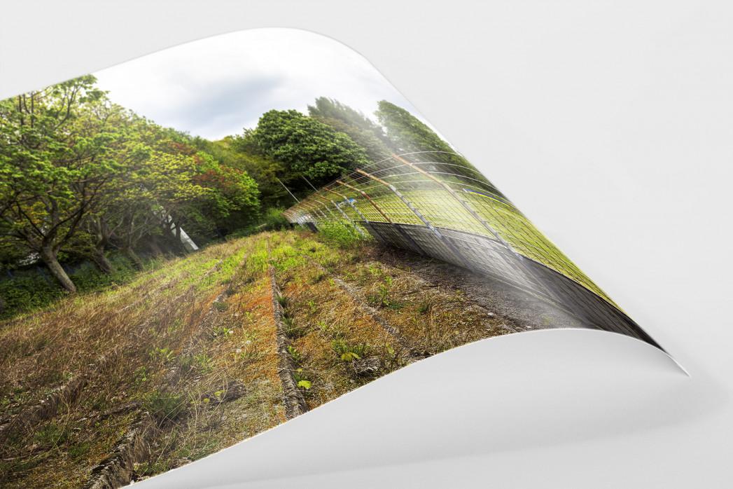 Verlassene Stadien - Solingen (2) als FineArt-Print