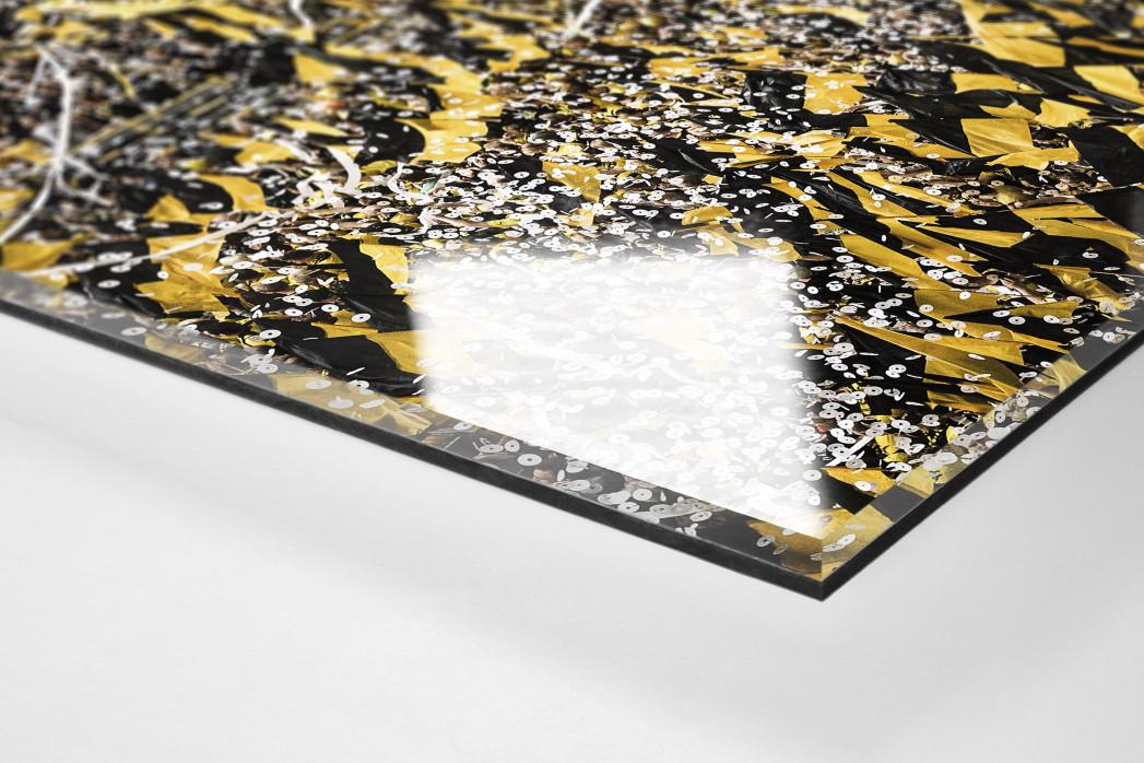 Gelbe Wand - Farbe (1) als Direktdruck auf Alu-Dibond hinter Acrylglas (Detail)