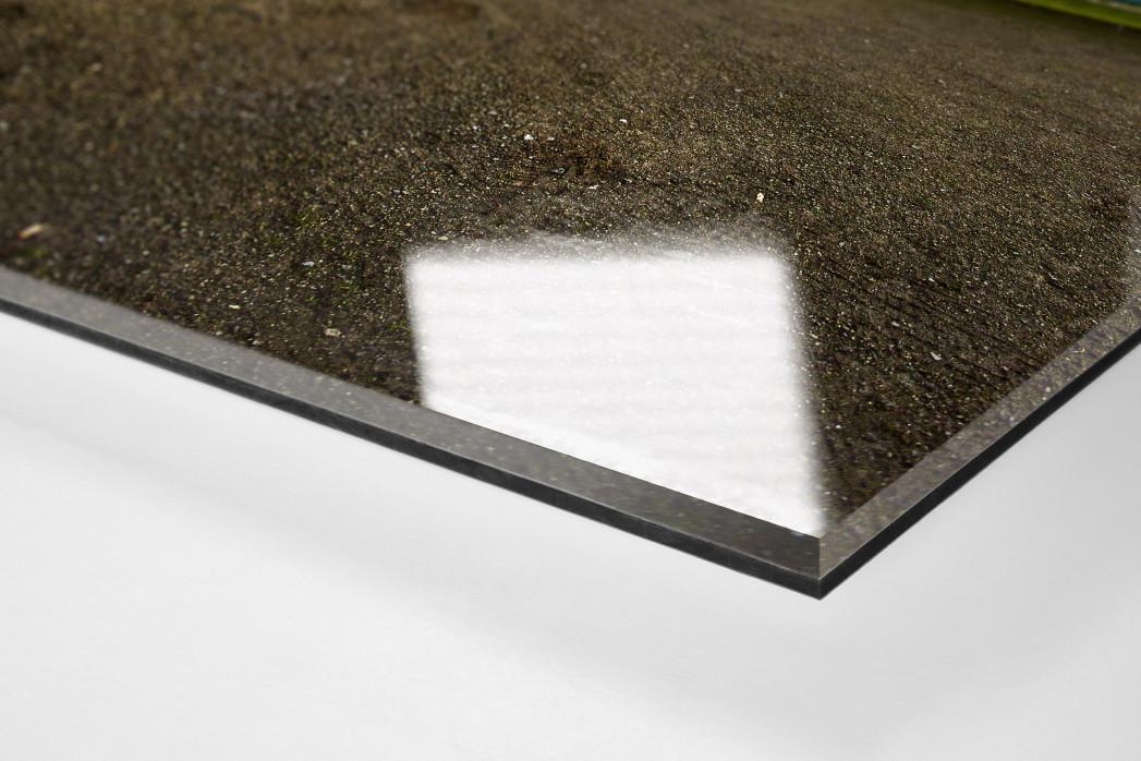Bei Westfalia Herne als Direktdruck auf Alu-Dibond hinter Acrylglas (Detail)
