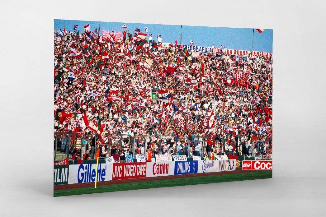 PSV vs. Benfica im Neckarstadion als auf Alu-Dibond kaschierter Fotoabzug