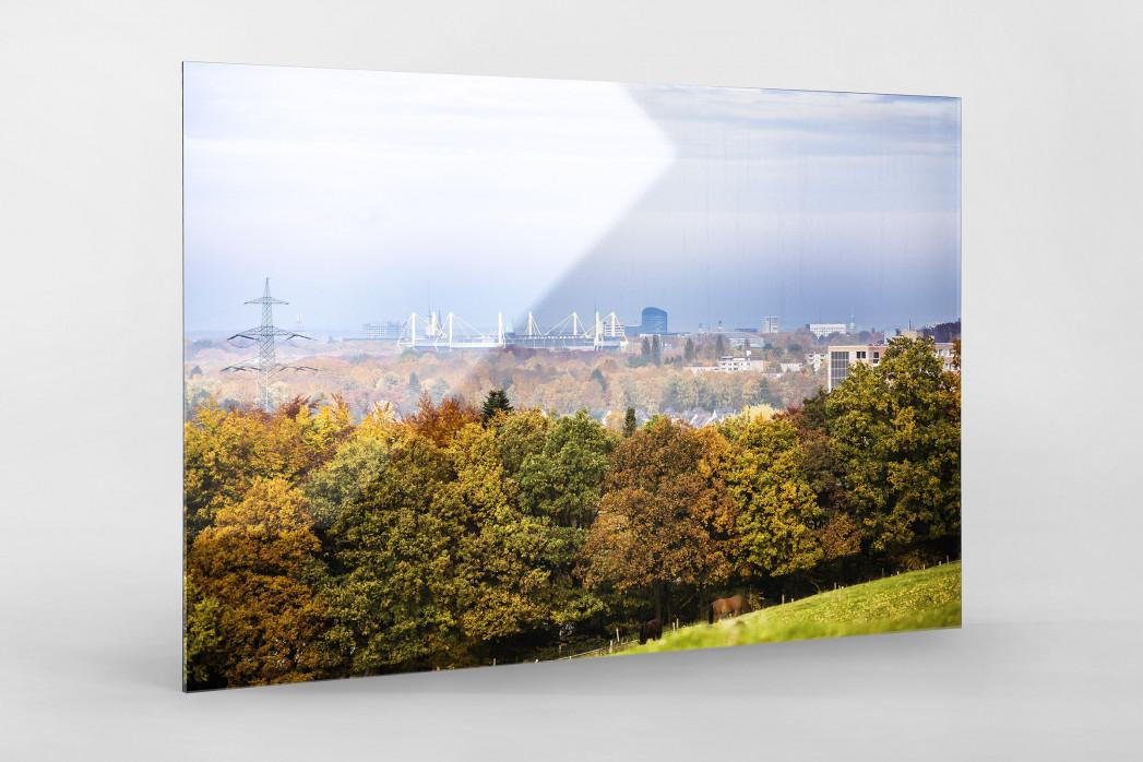 Signal Iduna Park im Stadtbild als Direktdruck auf Alu-Dibond hinter Acrylglas