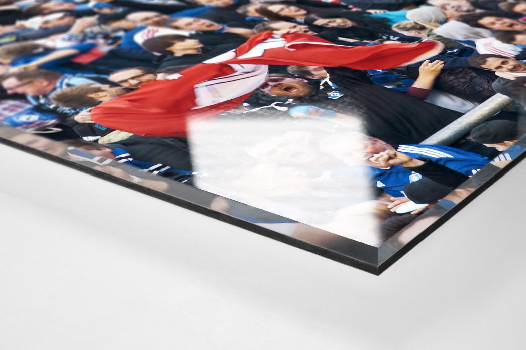 HSV Fans bei der Relegation nach dem Tor als Direktdruck auf Alu-Dibond hinter Acrylglas (Detail)