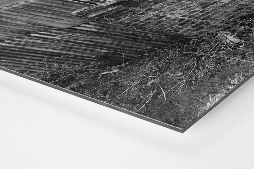 Blick über die Mauer als auf Alu-Dibond kaschierter Fotoabzug (Detail)