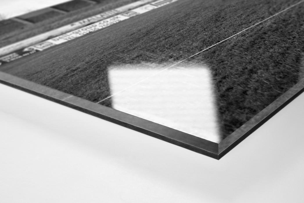 Platzwart in Schottland als Direktdruck auf Alu-Dibond hinter Acrylglas (Detail)