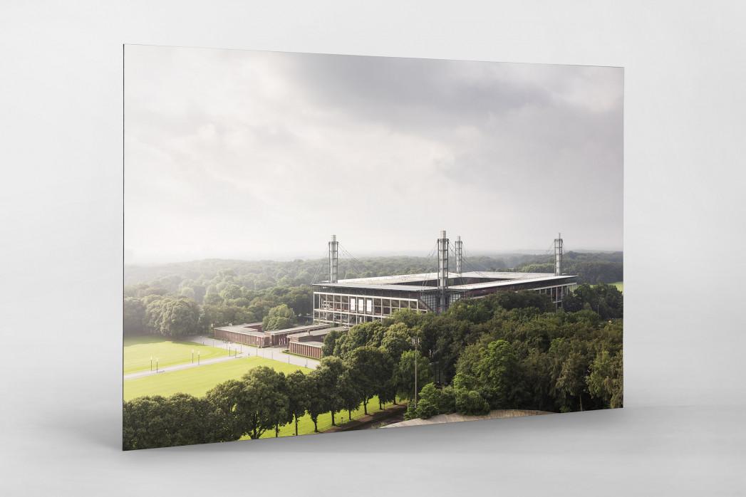 Blick auf die Kölner Arena als auf Alu-Dibond kaschierter Fotoabzug