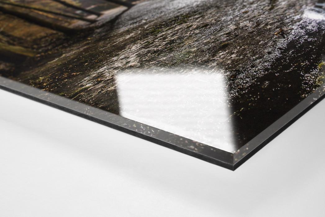Draußen vor der Alten Försterei als Direktdruck auf Alu-Dibond hinter Acrylglas (Detail)