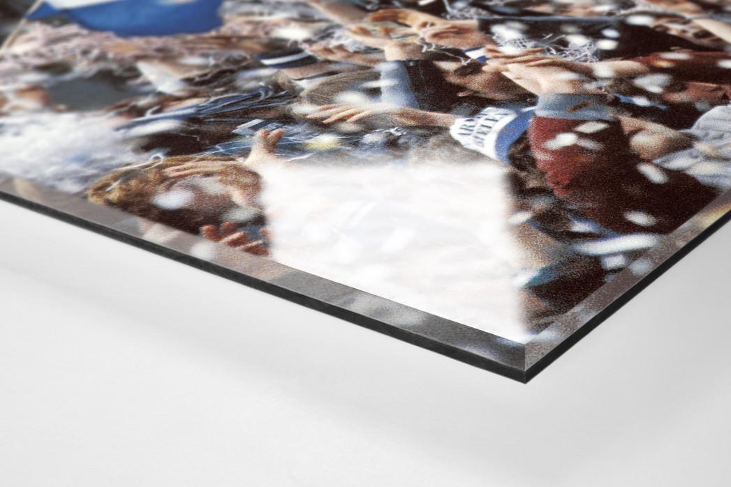 Lametta auf der Alm als Direktdruck auf Alu-Dibond hinter Acrylglas (Detail)