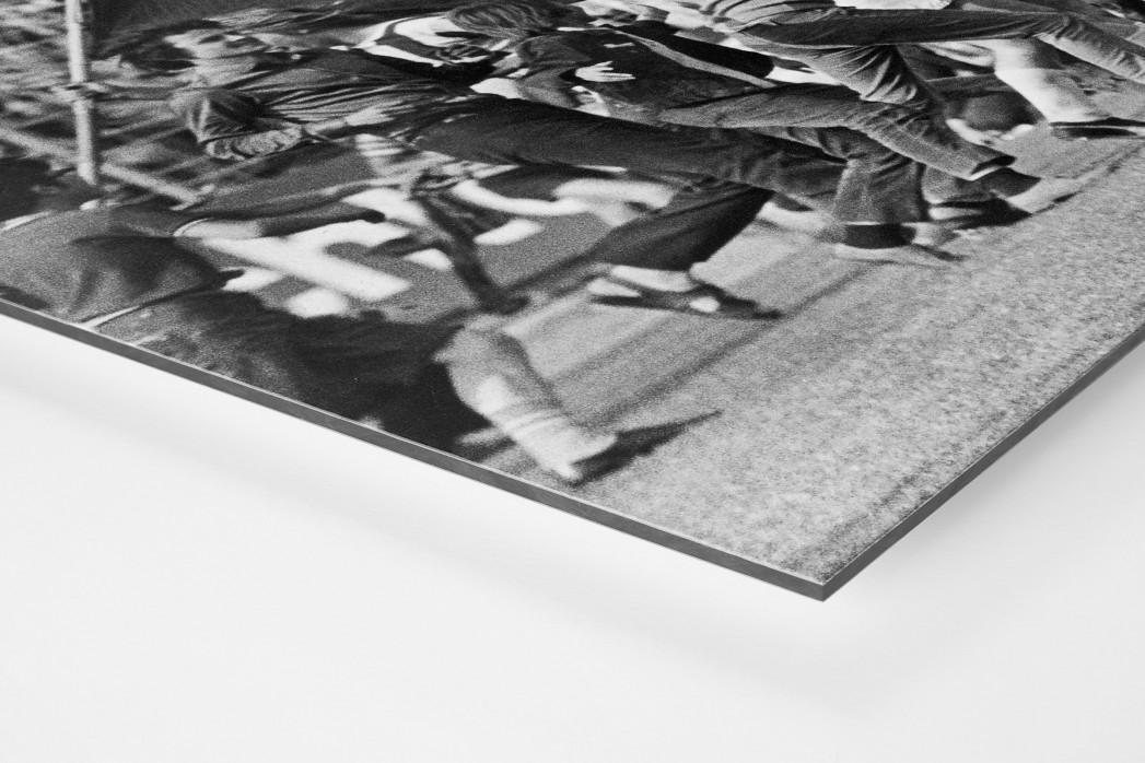 MSV Fahnen als auf Alu-Dibond kaschierter Fotoabzug (Detail)