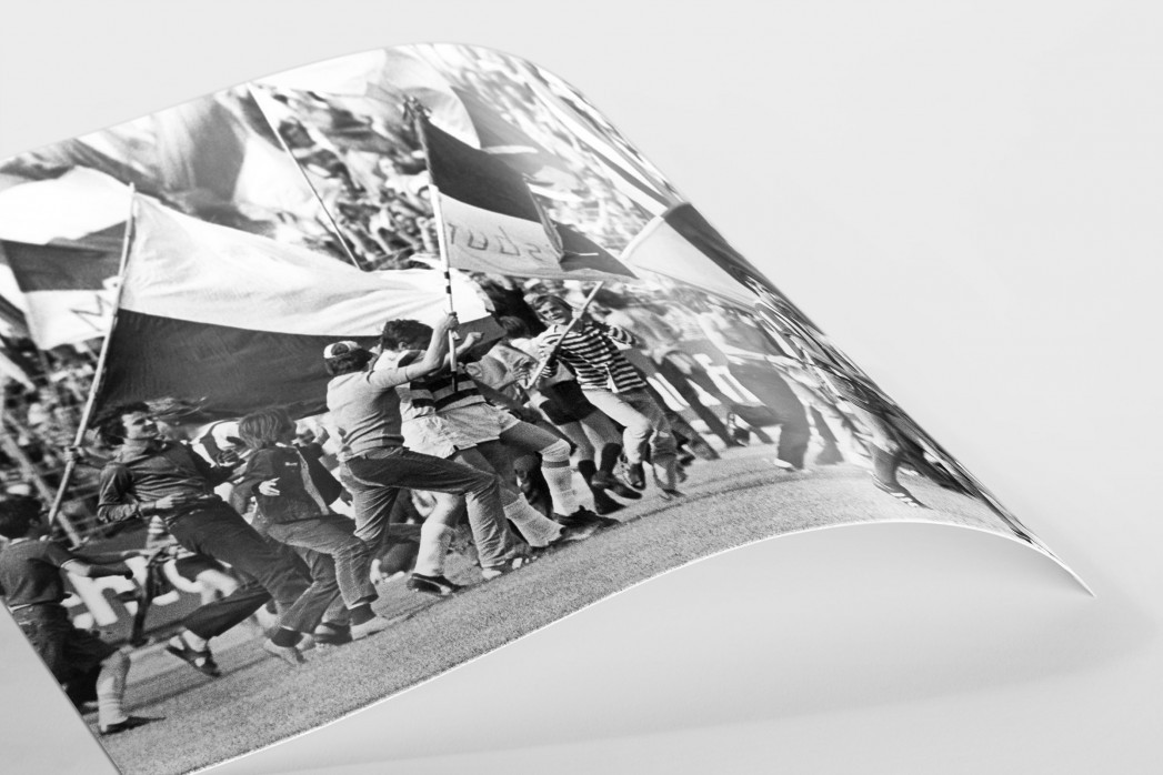 MSV Fahnen als FineArt-Print