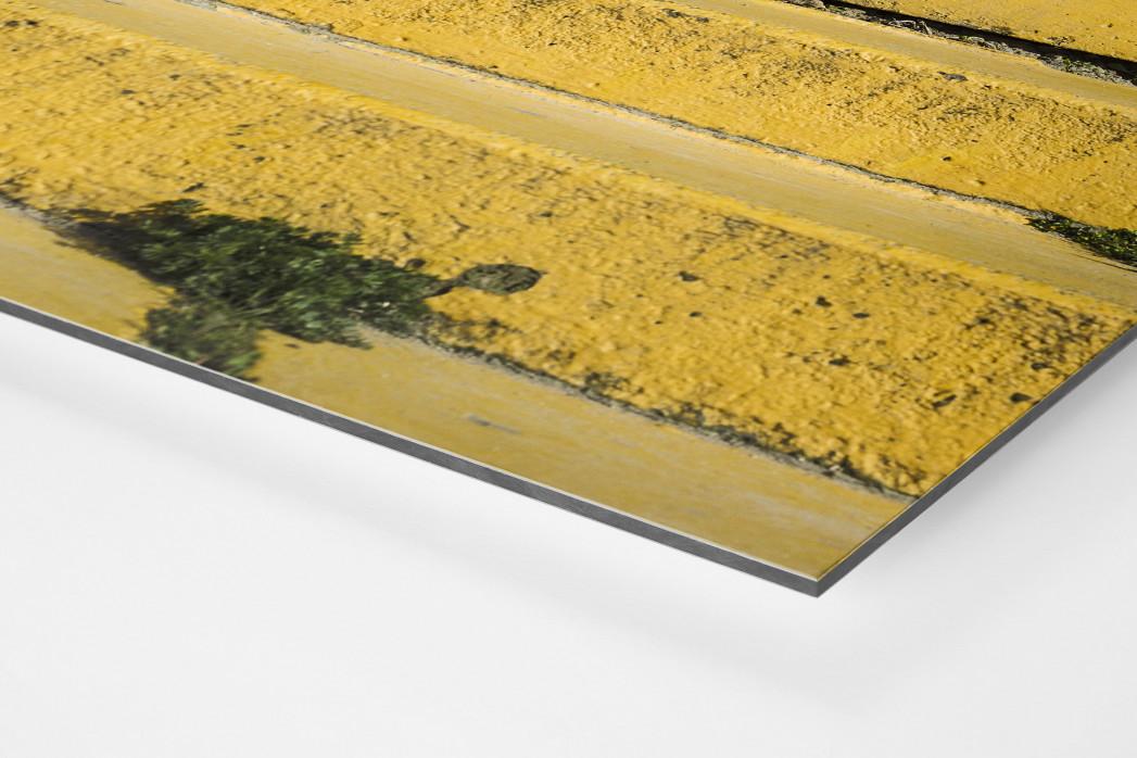 Tribüne Bölle (2) als auf Alu-Dibond kaschierter Fotoabzug (Detail)