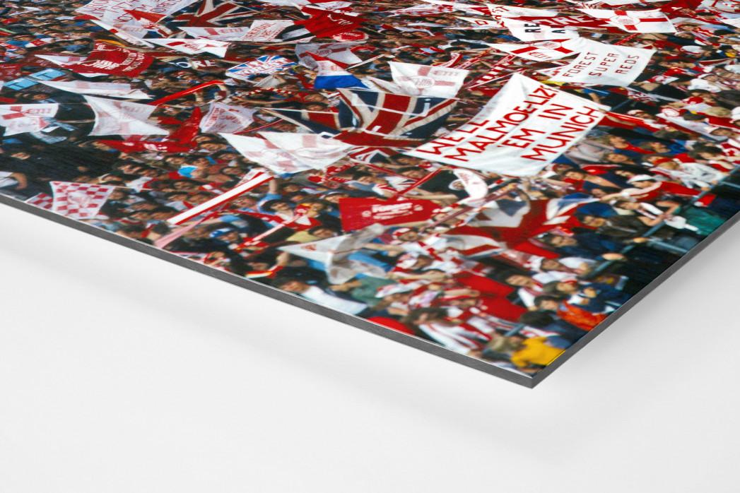 Nottingham Fans als auf Alu-Dibond kaschierter Fotoabzug (Detail)