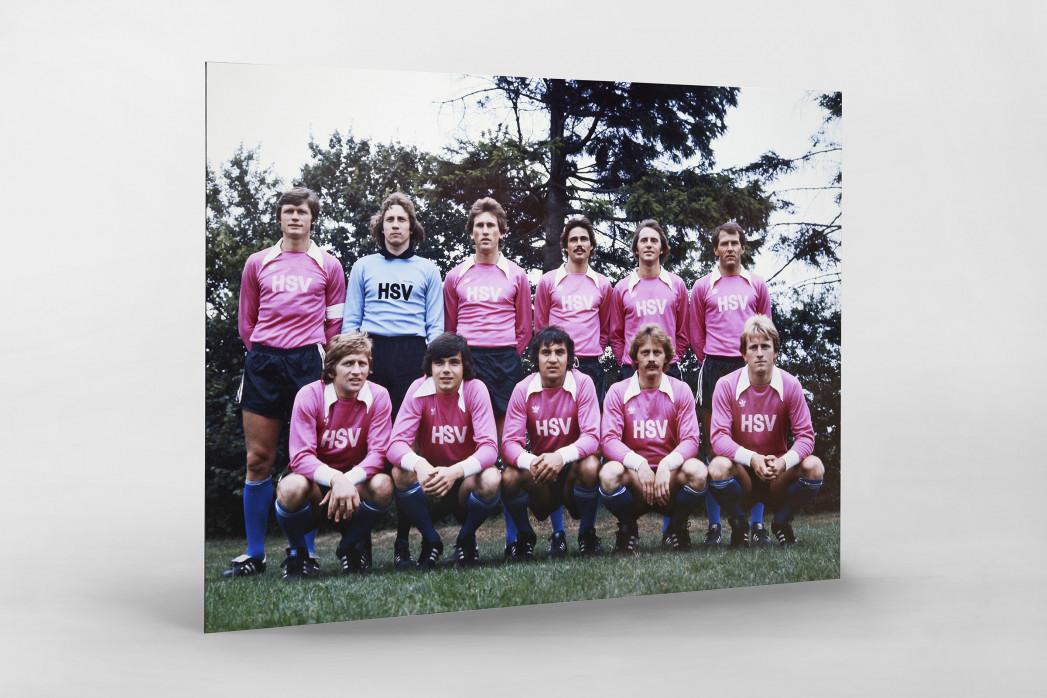 HSV in Rosa als auf Alu-Dibond kaschierter Fotoabzug