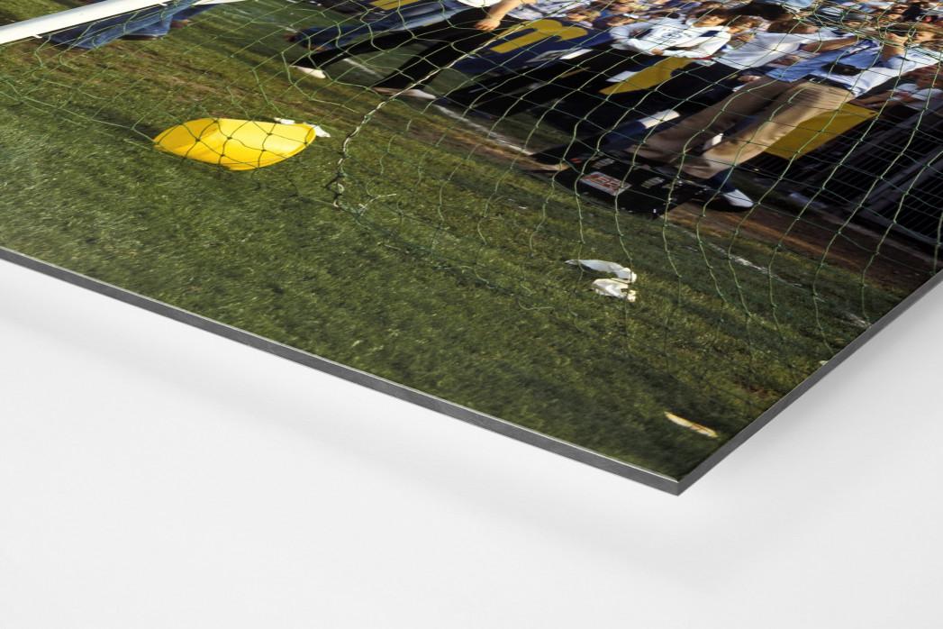 HSV Fans auf dem Tor als auf Alu-Dibond kaschierter Fotoabzug (Detail)