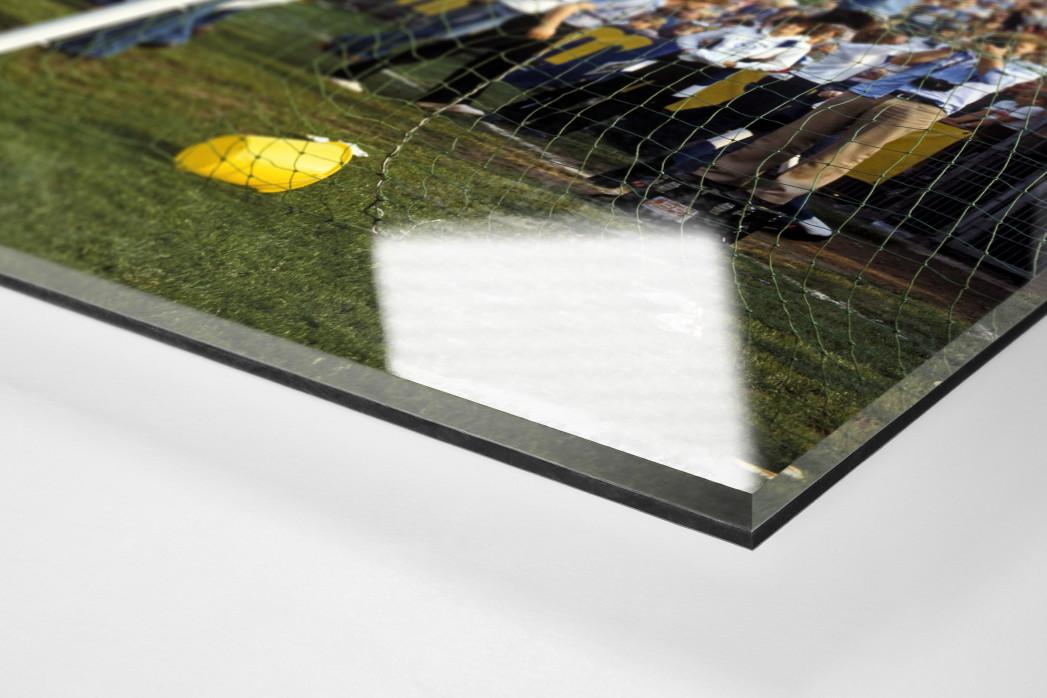 HSV Fans auf dem Tor als Direktdruck auf Alu-Dibond hinter Acrylglas (Detail)