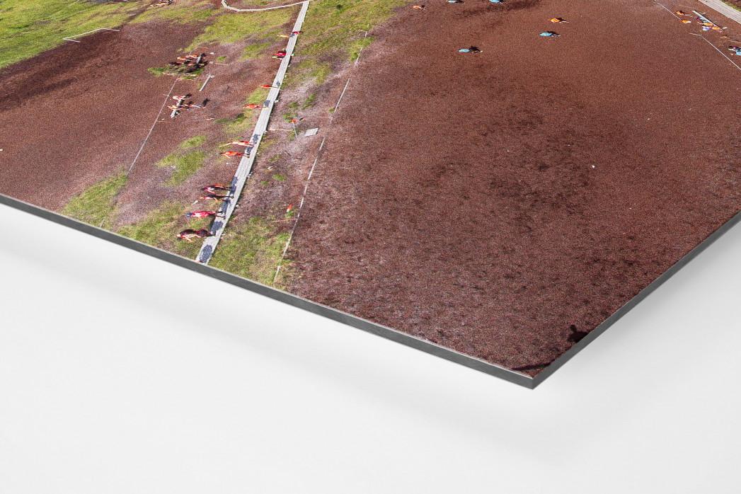Fußballplatz in Hyrynsalmi als auf Alu-Dibond kaschierter Fotoabzug (Detail)