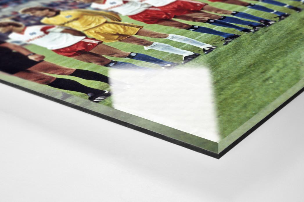 HSV im Waldstadion als Direktdruck auf Alu-Dibond hinter Acrylglas (Detail)