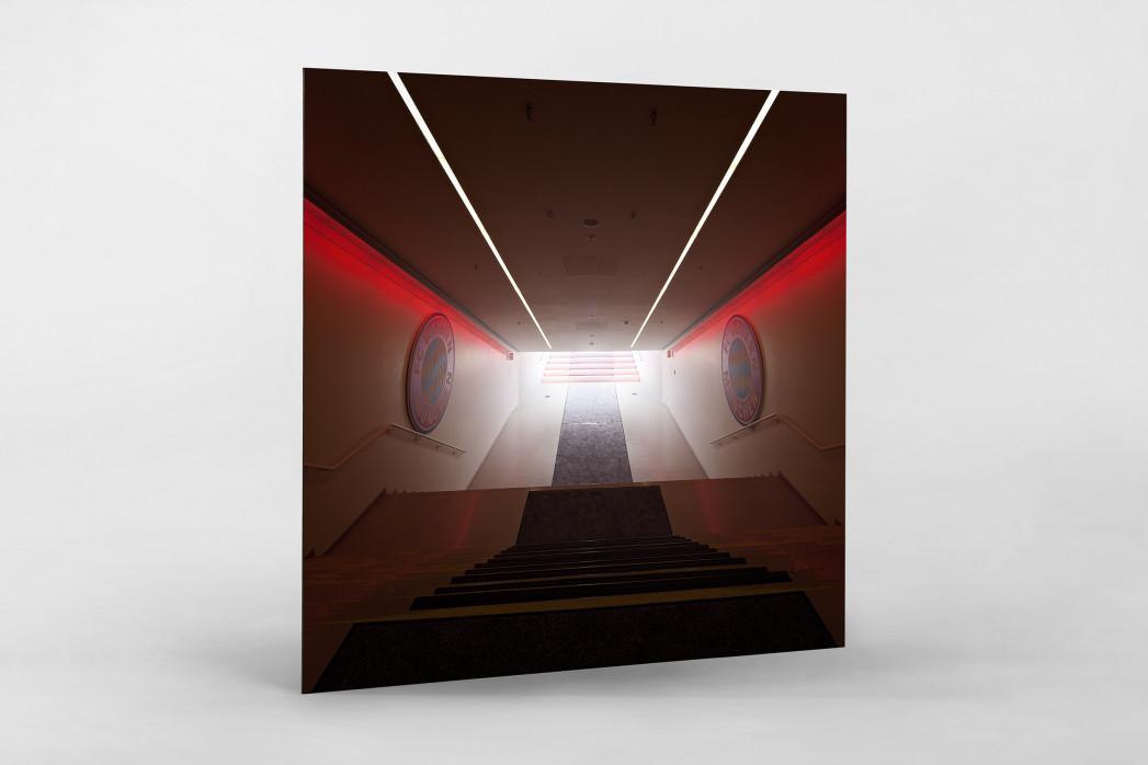 Spielertunnel Allianz Arena als auf Alu-Dibond kaschierter Fotoabzug