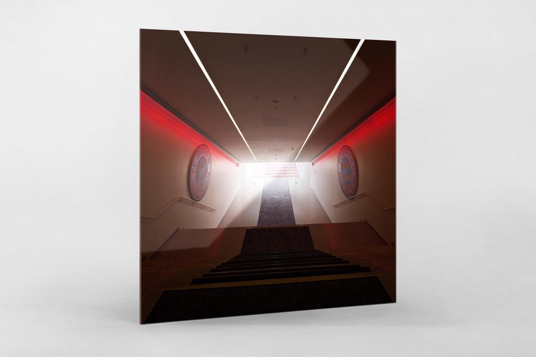 Spielertunnel Allianz Arena als Direktdruck auf Alu-Dibond hinter Acrylglas