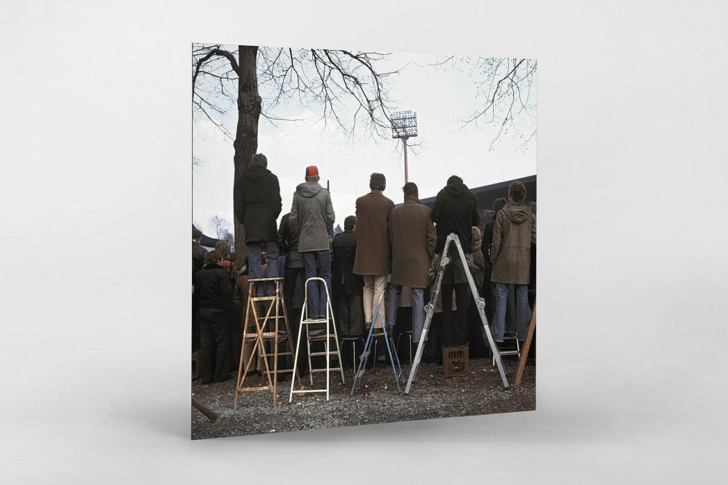 Fans auf der Leiter (2) als auf Alu-Dibond kaschierter Fotoabzug