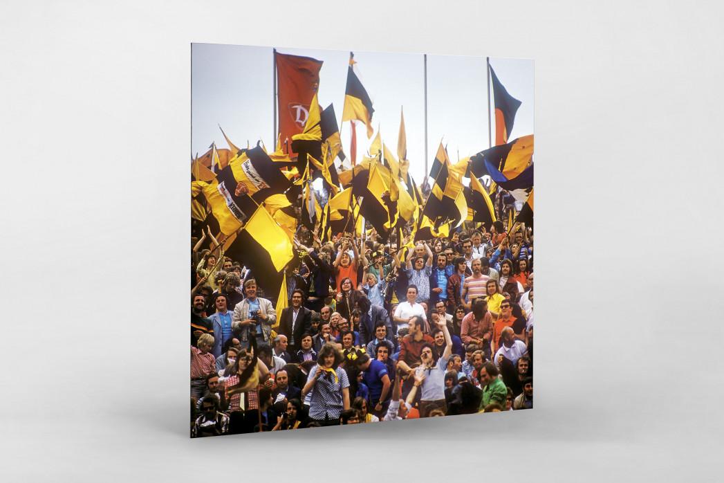 Dresden Fans  als auf Alu-Dibond kaschierter Fotoabzug