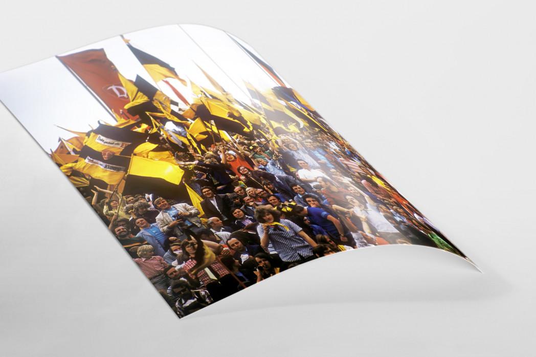 Dresden Fans  als FineArt-Print