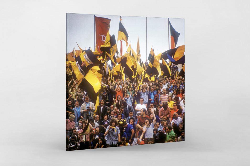 Dresden Fans  als Leinwand auf Keilrahmen gezogen