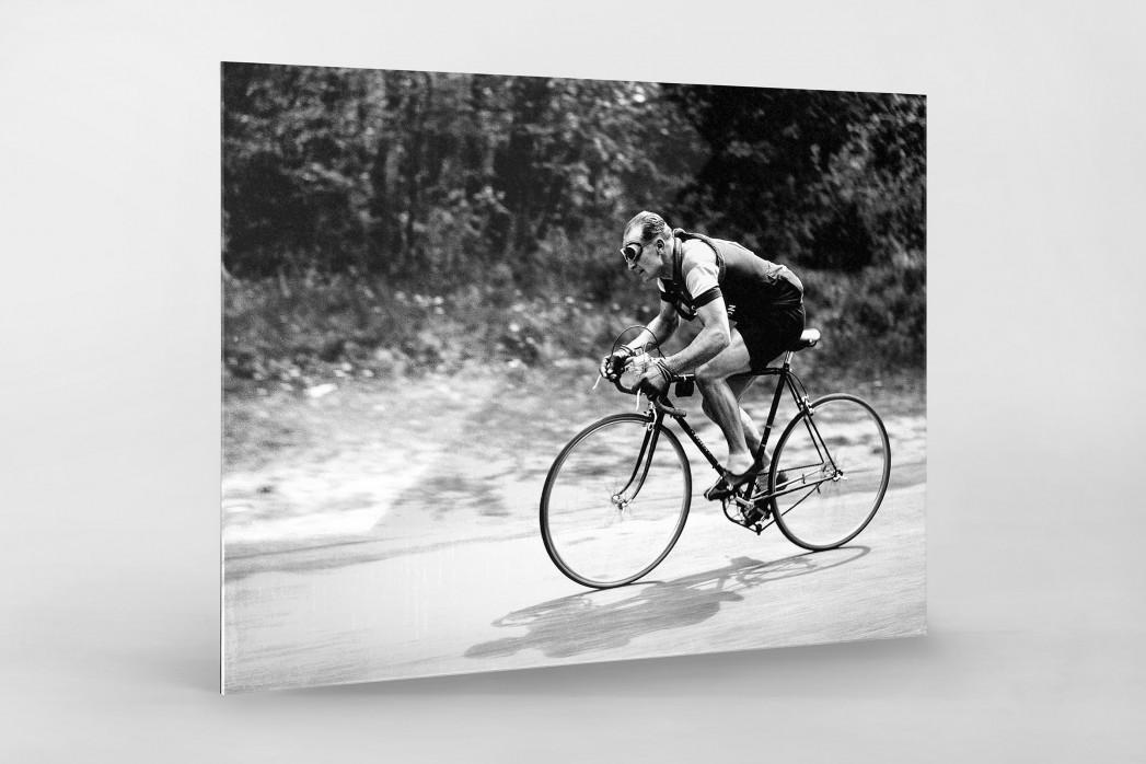 Mit Brille bei der Tour 1937 als Direktdruck auf Alu-Dibond hinter Acrylglas