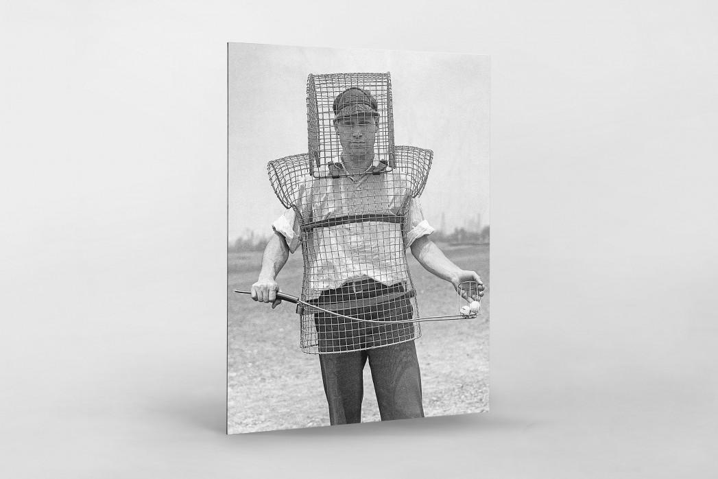 Sicherer Caddy als auf Alu-Dibond kaschierter Fotoabzug