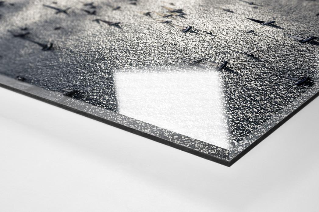 Barcolana (3) als Direktdruck auf Alu-Dibond hinter Acrylglas (Detail)