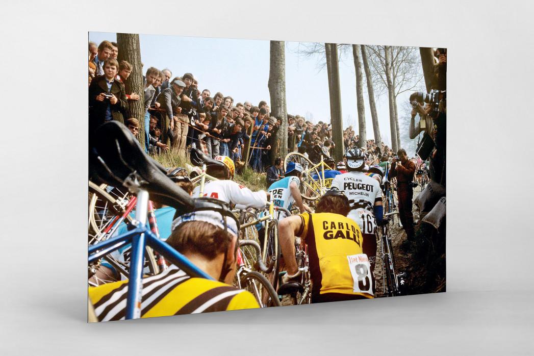 Fahrradtragen bei der Flandern-Rundfahrt als auf Alu-Dibond kaschierter Fotoabzug