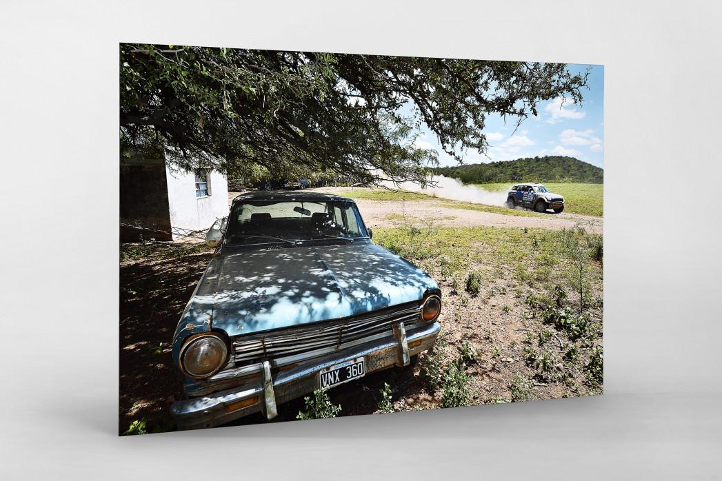 Bei der Rallye in Argentinien als auf Alu-Dibond kaschierter Fotoabzug