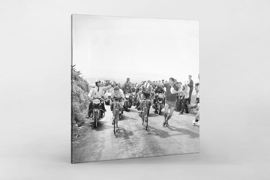 Mit dem Schwamm bei der Tour 1964 als Leinwand auf Keilrahmen gezogen