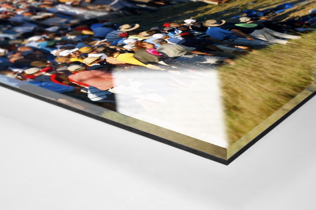 Schlag aus dem Zuschauerbereich als Direktdruck auf Alu-Dibond hinter Acrylglas (Detail)
