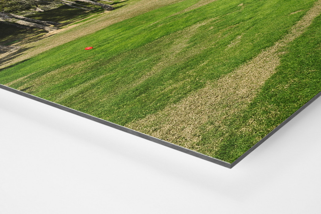 Benidorm Golfresort als auf Alu-Dibond kaschierter Fotoabzug (Detail)