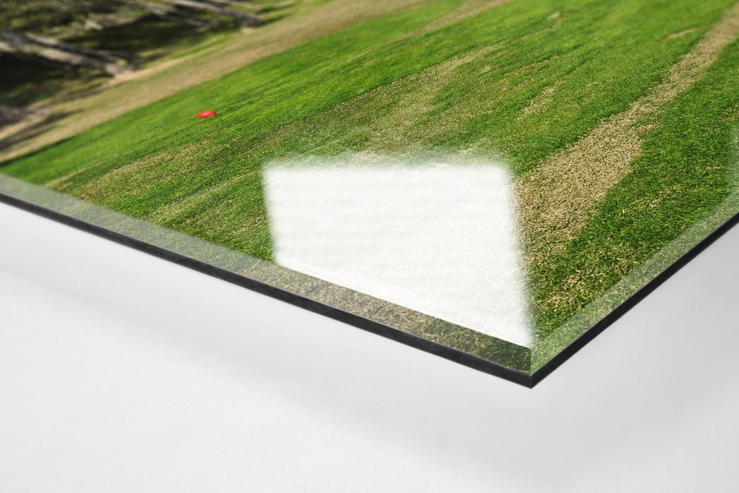 Benidorm Golfresort als Direktdruck auf Alu-Dibond hinter Acrylglas (Detail)