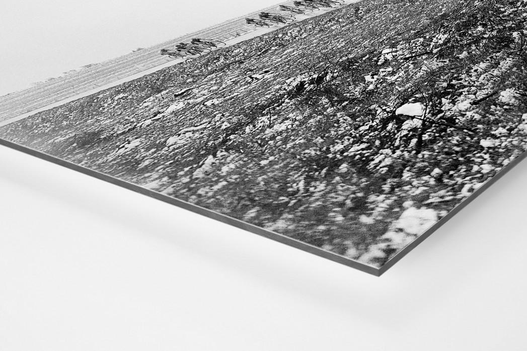 Um die Kurve bei Lüttich-Bastogne-Lüttich als auf Alu-Dibond kaschierter Fotoabzug (Detail)