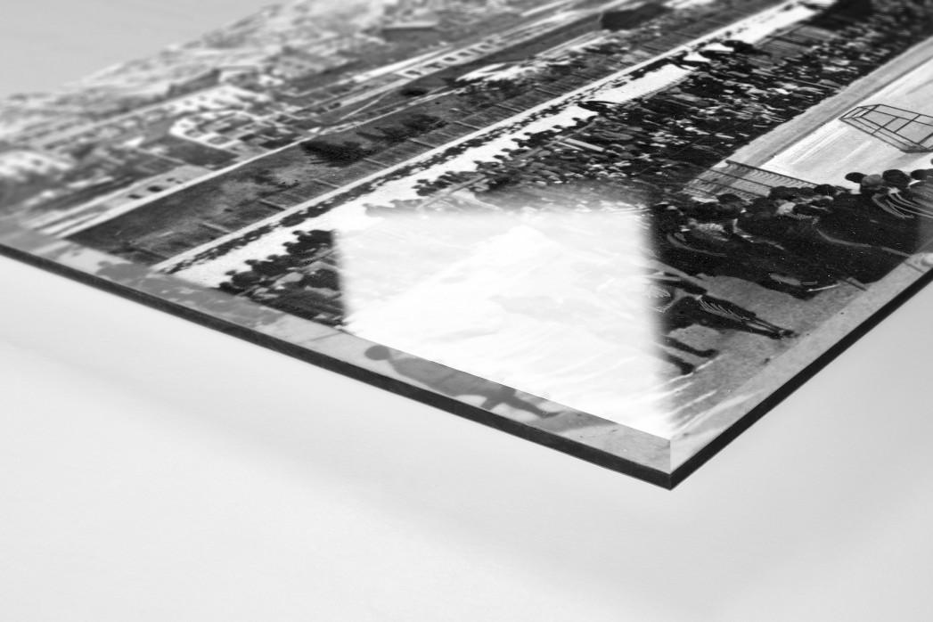 Hockey Club Davos als Direktdruck auf Alu-Dibond hinter Acrylglas (Detail)