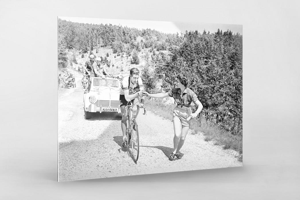 Apfel geben bei der Tour 1955 als Direktdruck auf Alu-Dibond hinter Acrylglas