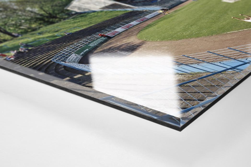 Herne als Direktdruck auf Alu-Dibond hinter Acrylglas (Detail)