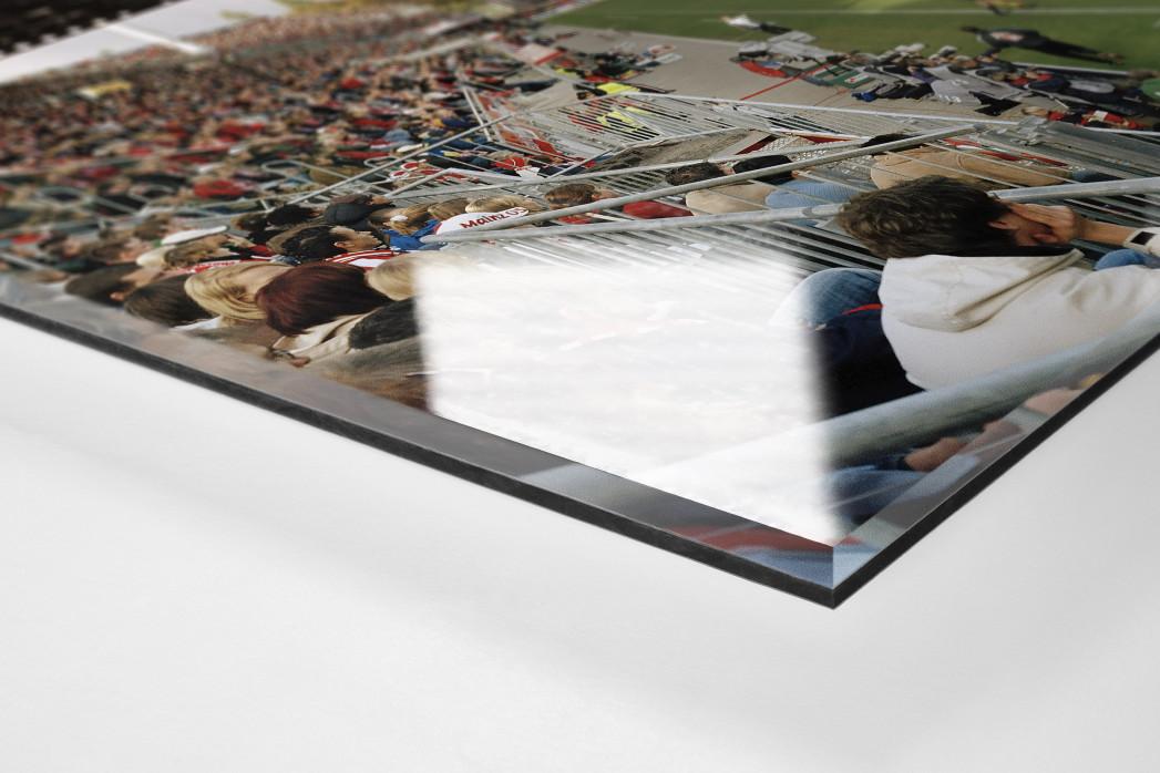 Mainz (2004) als Direktdruck auf Alu-Dibond hinter Acrylglas (Detail)