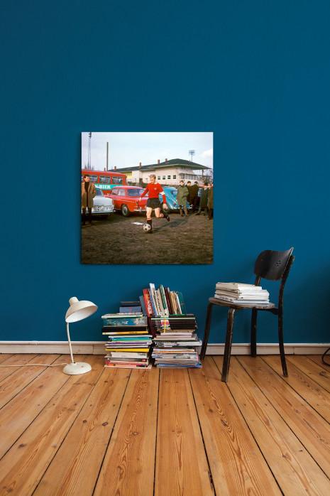 »Strehl auf dem Parkplatz« in deinem Zuhause - 11FREUNDE BILDERWELT