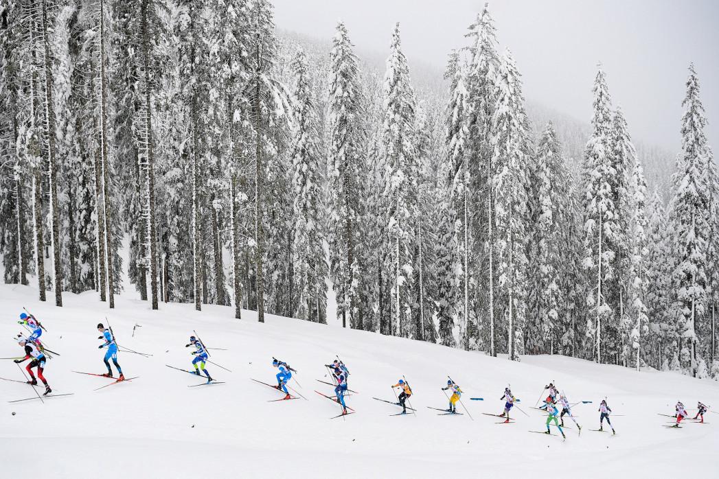 Biathlon vor verschneitem Wald