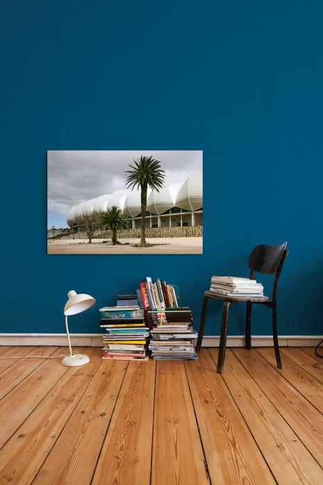 »Palmen in Port Elizabeth« an deiner Wand - 11FREUNDE BILDERWELT