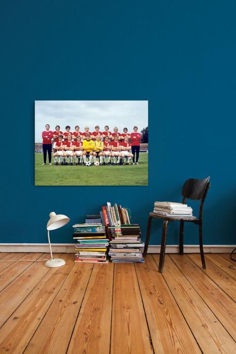 Mannschaftsfoto vom Halleschen FC Chemie aus den Siebzigern an deiner Wand - 11FREUNDE BILDERWELT