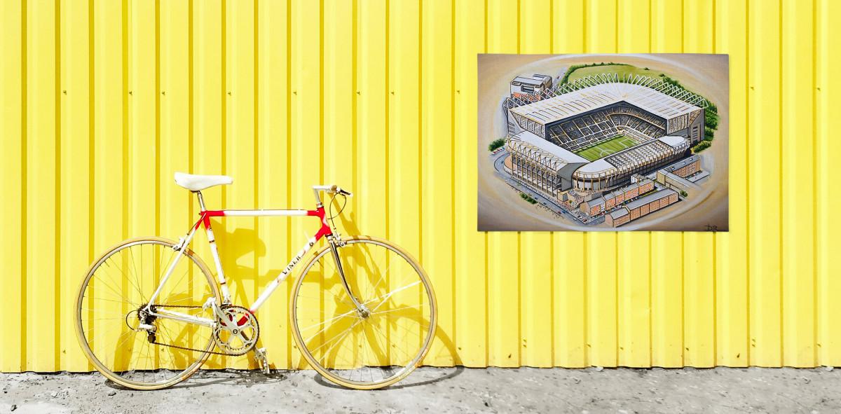 Stadia Art: St. James' Park - Poster bestellen - 11FREUNDE SHOP
