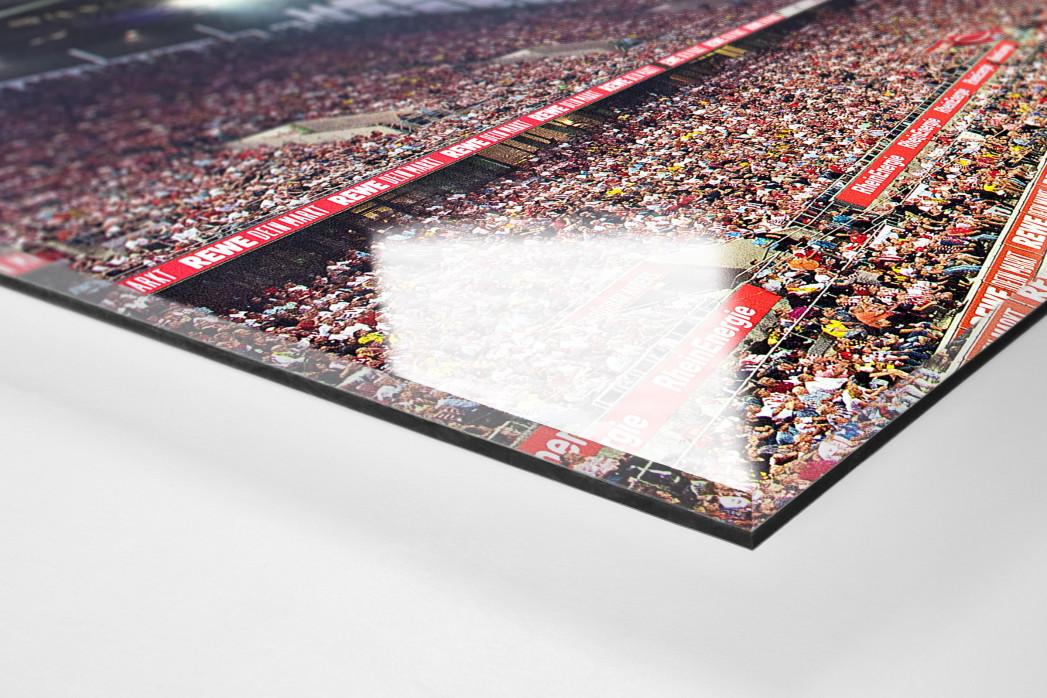 Köln (2019) - 1. FC Köln Wandbild Stadion Panorama